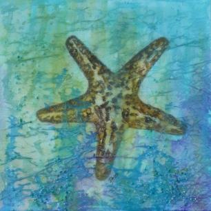 Textured Starfish