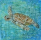 Textured Seaturtle